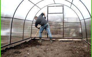 Чем и как обработать теплицу после сбора урожая – выращиваем в теплице