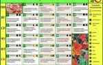 Лунный календарь садовода и огородника на сентябрь 2018: народные приметы, задачи на месяц, таблица – выращиваем в теплице