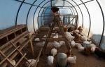 Мульча для огурцов: виды, технология мульчирования в теплице, фото, видео – выращиваем в теплице