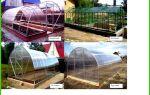 Фундамент под теплицу из поликарбоната: какой лучше, в каких случаях нужен, установка, как сделать, фото, видео – выращиваем в теплице