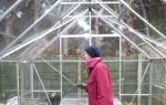 Обработка теплицы из поликарбоната осенью: чем и как обрабатывать после сбора урожая, особенности дезинфекции почвы, фото, видео – выращиваем в теплице