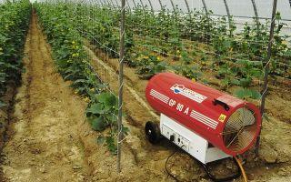 Отопление теплицы тепловым насосом: выбор, установка оборудования, принцип работы, фото, видео – выращиваем в теплице