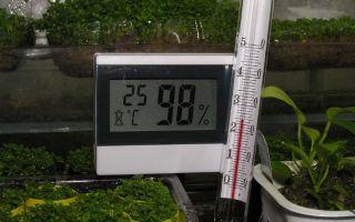 Микроклимат в теплице: температура, оптимальная влажность, влияние ультрафиолета, как уменьшить показатели, фото, видео – выращиваем в теплице