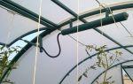 Арочная теплица: конструкции из металла, поликарбоната, профильной трубы, чертежи, фото, видео – выращиваем в теплице