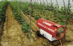 Отопление теплицы газом: применение газового котла, обогревателя, эксплуатация, фото, видео – выращиваем в теплице