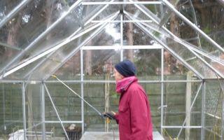 Обработка теплицы из поликарбоната весной: сроки и правила дезинфекции, чем и как обрабатывать перед посадкой, фото, видео – выращиваем в теплице
