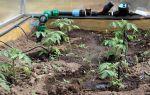 Капельная лента для полива: характеристика, виды, фото, монтаж своими руками, видео – выращиваем в теплице