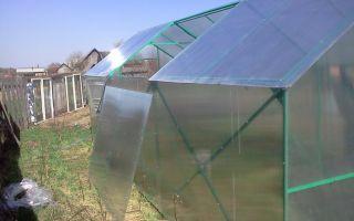 Теплица со съемной крышей: варианты с раздвижным, снимающимся, разъемным верхом, парник кормилица, фото, видео – выращиваем в теплице