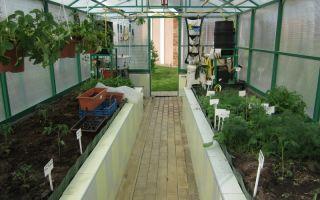 Бассейн в теплице из поликарбоната на дачном участке: фото, как сделать своими руками, видео – выращиваем в теплице