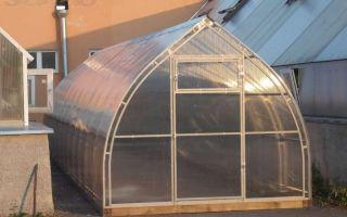Петромаш теплицы: юлиана, эльбрус, электросталь, успех, богатырь, фото, видео – выращиваем в теплице