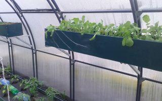 Теплица на балконе: фото парника на 3 полки, инструкция по изготовлению, видео – выращиваем в теплице