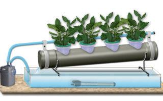 Гидропонная установка своими руками: как сделать, раствор удобрения, выращивание с помощью системы в теплице, фото, видео – выращиваем в теплице