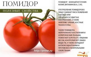 Вред и польза помидоров для организма: какие в них витамины, чем полезны для здоровья женщин, мужчин, фото, видео – выращиваем в теплице