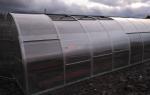 Разборная теплица из поликарбоната: со съемной крышей, раздвижная, установка, фото, видео – выращиваем в теплице
