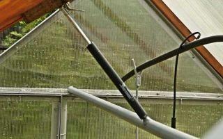 Автоматическое открывание форточек в теплице своими руками: с боковым толкателем, в 2дум, самооткрывающееся устройство, фото, видео – выращиваем в теплице