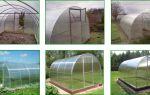 Теплицы из поликарбоната: оптимальные размеры, сборка своими руками, фото, видео – выращиваем в теплице