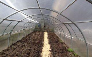 Теплицы фермерские из поликарбоната: характеристика, преимущества, парник фермер, фото, видео – выращиваем в теплице