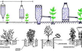 Капиллярный полив: насос, шланг и другие элементы системы, принцип работы, достоинства, фото, видео – выращиваем в теплице