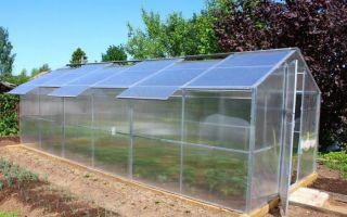 Двухскатные теплицы из поликарбоната с крышей: чертеж, монтаж своими руками, фото, видео – выращиваем в теплице