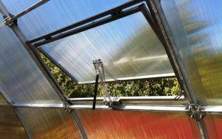 Форточка для теплицы из поликарбоната: автомат для проветривания, как сделать автоматическую вентиляцию своими руками, фото, видео – выращиваем в теплице