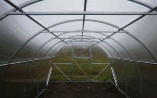 Теплицы урожай: пк, элит, классик, абсолют, эконом, характеристика, отзывы, фото, видео – выращиваем в теплице